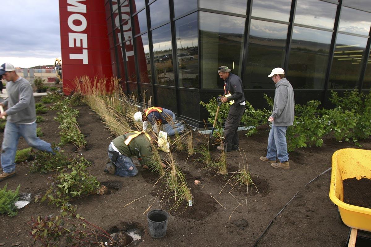 Mammoet Landscaping