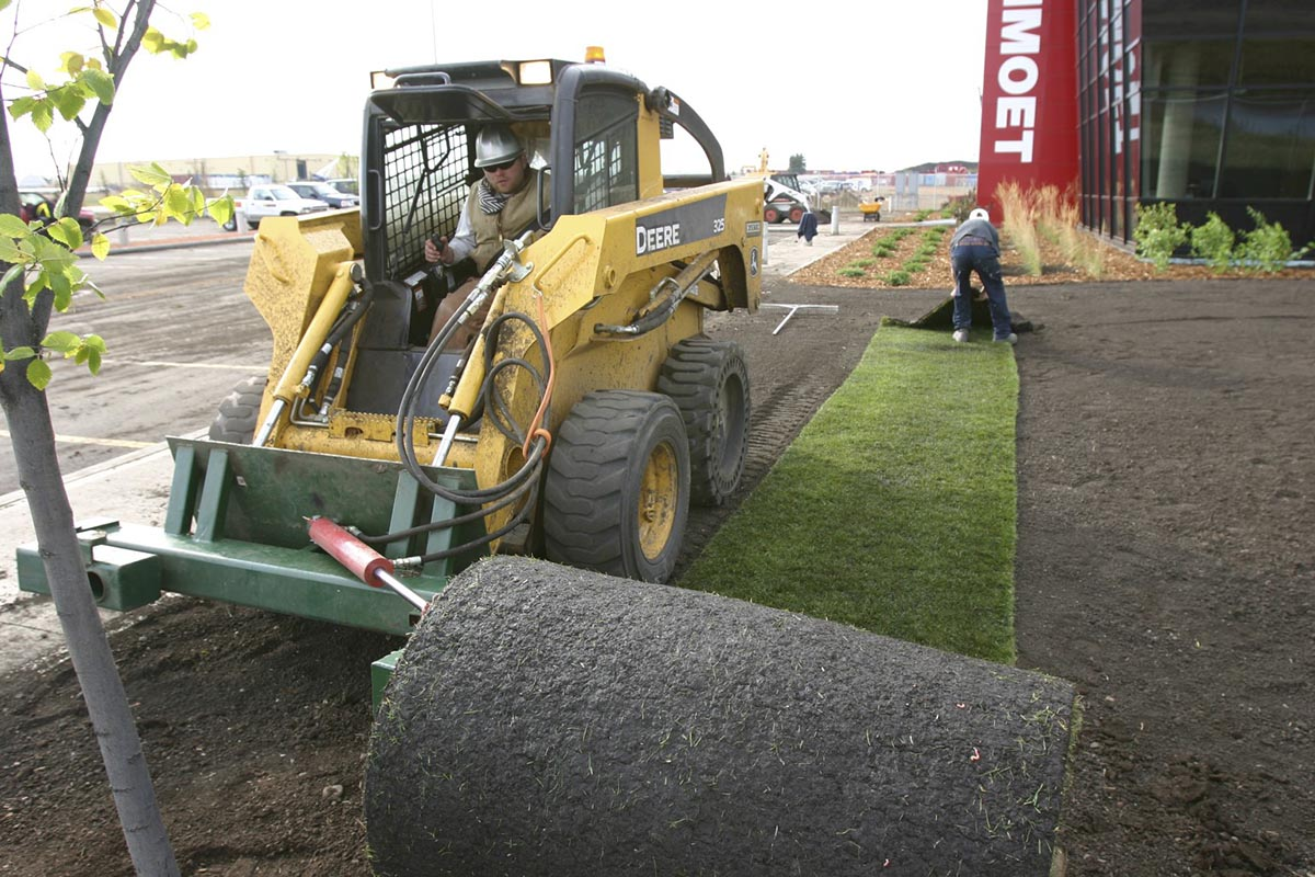 Sod Landscaping